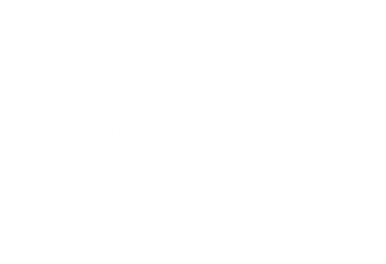 - 2 lemons, cut in quarters and without seeds. - A bunch of mint, just the leaves. - 1 Litre of cold water or sparkling water. - A ½ cup of honey or sugar, fit to taste. - 8 to 16 ounces of 204 VODKA about 1 to 2 cups, adjust to taste. - Ice.